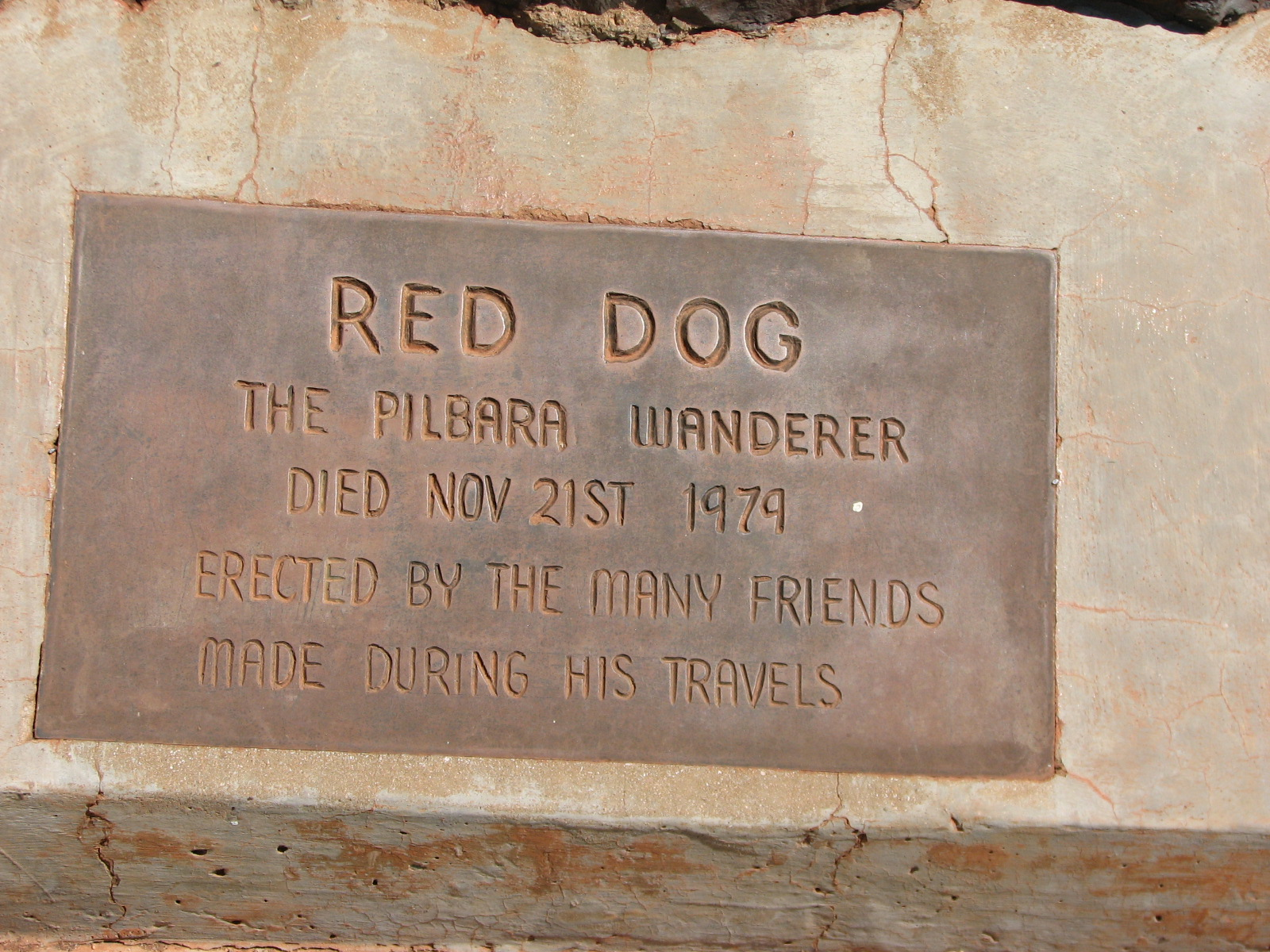 red dog the true story